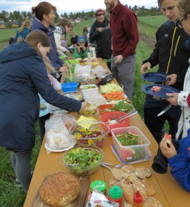 Piknik på Dysterjordet