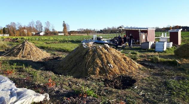 komposthaug