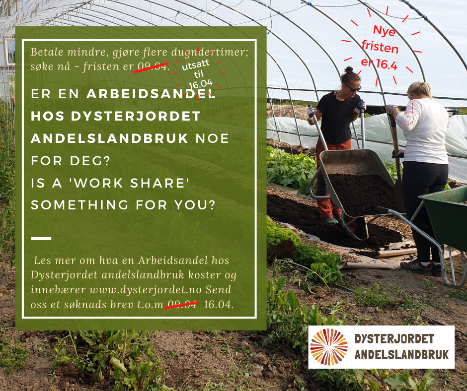 A 'work share' (arbeidsandel) for people on lower incomes: a way to join in 2021